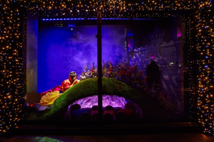 Harrods Christmass Windows 2012 Disney Princess